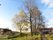 Paisagem do outono, parque do outono dentro com as árvores douradas do outono no tempo ensolarado Fotos de Stock Royalty Free