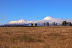 Paisagem do outono do parque nacional de Tongariro Fotos de Stock Royalty Free