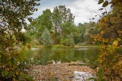 Paisagem do outono pelo lago Foto de Stock