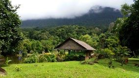 Paisagem do país, Bornéu Foto de Stock
