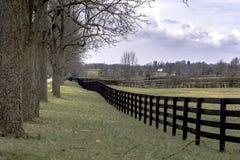 Paisagem do país com fenceline e árvores Fotografia de Stock Royalty Free