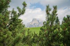 Paisagem do panorama de Itália Dolomiti da montanha do verão fotografia de stock