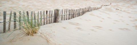 Paisagem do panorama do sistema das dunas de areia na praia no nascer do sol Fotografia de Stock Royalty Free
