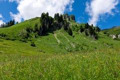Paisagem do panorama em Baviera com montanhas dos cumes e no prado na mola Imagem de Stock Royalty Free