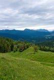 Paisagem do panorama em Baviera com montanhas dos cumes e no prado na mola Fotos de Stock Royalty Free