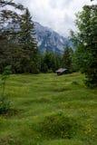 Paisagem do panorama em Baviera com montanhas dos cumes e no prado na mola Foto de Stock