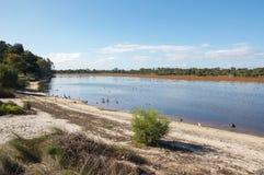 Paisagem do pantanal do lago Bibra Fotografia de Stock Royalty Free