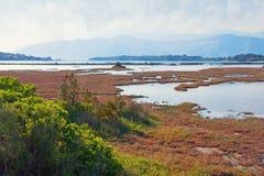 Paisagem do pantanal, pântano de sal Ideia da reserva natural especial Solila, Tivat, Montenegro, verão Fotografia de Stock Royalty Free