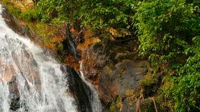 Paisagem do paraíso da selva do país tropical Cascata da cachoeira no movimento verde da floresta tropical do volume de água do p video estoque
