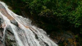 Paisagem do paraíso da selva do país tropical Cascata da cachoeira no movimento verde da floresta tropical do volume de água do p vídeos de arquivo