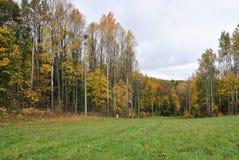 Paisagem do parque do outono Fotos de Stock