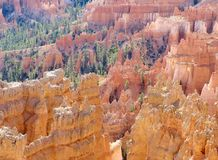 Paisagem do parque nacional da garganta de Bryce Fotos de Stock Royalty Free