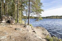 Paisagem do parque nacional de Repovesi Imagem de Stock