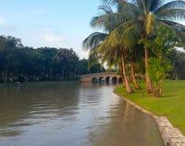 Paisagem do parque público urbano no por do sol com espaço da cópia em Banguecoque, Tailândia Imagem de Stock