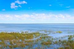 Paisagem do parque do pantanal de Isimangaliso Fotografia de Stock Royalty Free