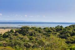 Paisagem do parque do pantanal de Isimangaliso Imagens de Stock Royalty Free