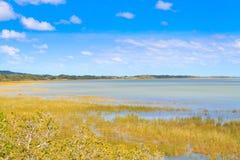 Paisagem do parque do pantanal de Isimangaliso Imagens de Stock