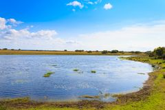 Paisagem do parque do pantanal de Isimangaliso Fotografia de Stock