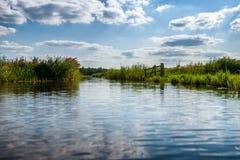 Paisagem do po'lder nos Países Baixos com valas e chann da água foto de stock royalty free