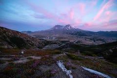 Paisagem do por do sol de Mount Saint Helens com Wildflowers Fotografia de Stock Royalty Free