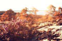 Paisagem do por do sol nas montanhas Imagem de Stock Royalty Free