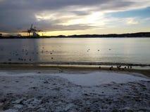 Paisagem do porto de Larvik, Noruega Paisagem escandinava Fotografia de Stock Royalty Free