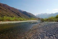 Paisagem do rio da mola Fotos de Stock