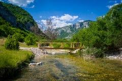 Paisagem do rio da montanha Foto de Stock