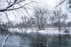 Paisagem do rio no inverno Imagens de Stock