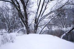 Paisagem do rio no inverno Imagens de Stock Royalty Free