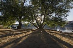 Paisagem do rive de Praga fotos de stock royalty free