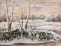 Paisagem do Siberian do inverno Fotos de Stock