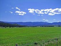 Paisagem do sul das montanhas rochosas Fotografia de Stock Royalty Free
