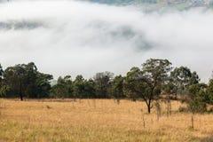Paisagem do vale da névoa da nuvem Imagem de Stock Royalty Free