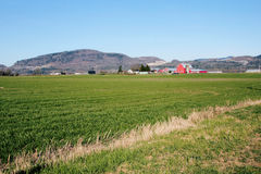 Paisagem do vale do país Foto de Stock Royalty Free
