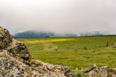 A paisagem do vale verde inundou com a luz com o gra verde luxúria foto de stock royalty free