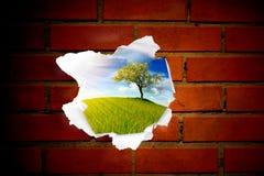 Paisagem do verão atrás do furo da parede de tijolo vermelho Imagens de Stock Royalty Free