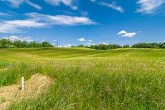 Paisagem do VERÃO campo agrícola montanhoso sob um céu nebuloso bonito fotografia de stock