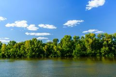 Paisagem do verão com as árvores e o rio verdes fotos de stock