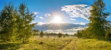 Paisagem do verão com estrada, um prado, a floresta e a névoa, panorama Fotos de Stock