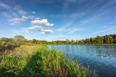 Paisagem do verão com lago imagens de stock royalty free