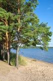Paisagem do verão com lago Seliger foto de stock