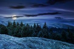 Paisagem do verão com os montes florestados na noite imagem de stock royalty free