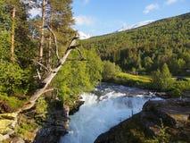 Paisagem do verão com rio da montanha noruega Foto de Stock Royalty Free