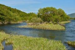 Paisagem do verão com rio Península de Kamchatka, costa leste foto de stock