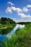 Paisagem do verão com um rio fotos de stock