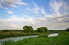 Paisagem do verão com um rio fotografia de stock
