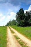 Paisagem do verão da únicas estrada e árvores Imagens de Stock