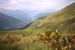 Paisagem do verão da paisagem da montanha Foto de Stock