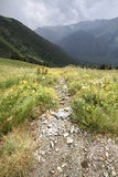 Paisagem do verão da paisagem da montanha Imagem de Stock Royalty Free
